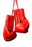 O vermelho encaixota luvas Imagens de Stock Royalty Free