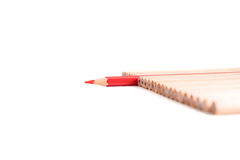O vermelho isolado coloriu o suporte do lápis fora de outros lápis marrons fotos de stock
