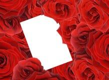 O vermelho levantou-se Fotografia de Stock