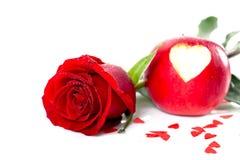 O vermelho levantou-se com coração para o amor Imagens de Stock