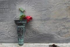 O vermelho levantou-se no cemitério Foto de Stock Royalty Free