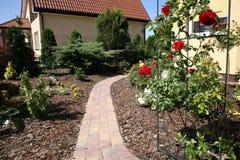 O vermelho levantou-se no jardim home Foto de Stock