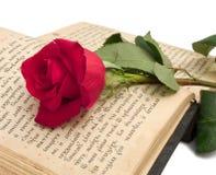 O vermelho levantou-se no livro velho Imagem de Stock Royalty Free