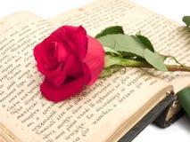 O vermelho levantou-se no livro velho Fotografia de Stock Royalty Free