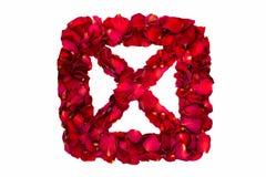 O vermelho secou as pétalas cor-de-rosa em uma caixa que forma X Fotografia de Stock