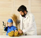 O veterinário e o assistente pequeno examinam o urso de peluche Gene e caçoe com as caras atentas que jogam o doutor fotos de stock royalty free