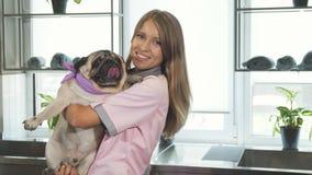 O veterinário está tomando o cão do pug em seus braços fotografia de stock royalty free