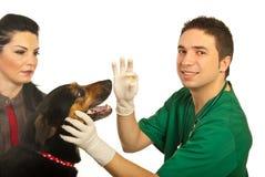 O veterinário feliz dá o comprimido ao cão imagens de stock