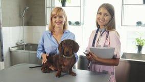 O veterinário, o proprietário e o texugo-cão alemão estão no escritório dos doutores imagem de stock