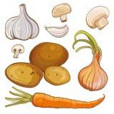 O vetor ajustou-se com cebola, cenoura, batatas, alho, cogumelos Foto de Stock