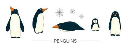 O vetor coloriu o grupo de pinguins bonitos do estilo dos desenhos animados isolados no fundo branco ilustração do vetor