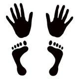 O vetor dá forma aos pés das mãos Imagens de Stock Royalty Free