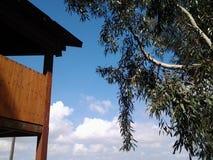 O vew de uma árvore de madeira dos azul-céu da casa na árvore sente a mosca livre Imagens de Stock Royalty Free