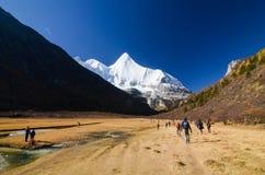 O viajante aprecia trekking no lanscape bonito na floresta do outono e na montanha da neve na reserva natural de Yading fotos de stock