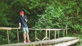 O viajante cruza-se através da ponte de suspensão na floresta verde do verão vídeos de arquivo