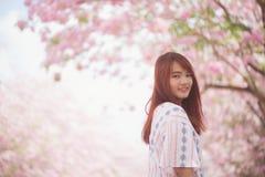 O viajante feliz da mulher relaxa sente livre com flores de cerejeira ou árvore da flor de sakura em férias Imagens de Stock