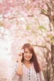 O viajante feliz da mulher relaxa sente livre com flores de cerejeira ou árvore da flor de sakura em férias Fotos de Stock Royalty Free