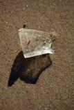 O vidro afiado da praia brilha no Sun fotos de stock royalty free
