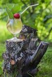 O vidro com custos da bebida no cânhamo Fotos de Stock Royalty Free