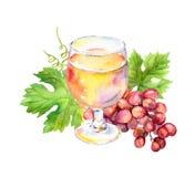O vidro de vinho cor-de-rosa com videira sae, bagas da uva watercolor ilustração stock