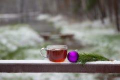 O vidro do chá quente e o Natal brincam no parque do inverno em uma tabela de madeira Imagens de Stock Royalty Free