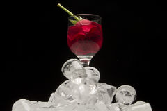 O vidro do vinho tinto com aumentou em cubos de gelo Imagem de Stock Royalty Free