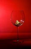 O vidro quebrado Fotos de Stock