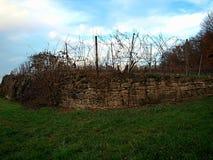 O vinhedo é encerrado com uma colocação velha da pedra fotos de stock royalty free