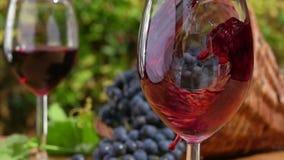 O vinho vermelho é derramado em um vidro vídeos de arquivo