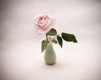 O vintage aumentou em um vaso fotografia de stock
