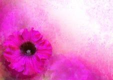O vintage denominou a beira floral Imagem de Stock
