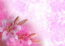 O vintage denominou o frame floral Fotos de Stock