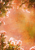 O vintage denominou o frame floral Imagens de Stock Royalty Free