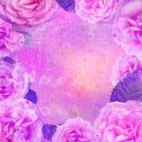 O vintage denominou o frame - rosas Imagens de Stock