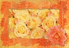 O vintage denominou o frame - rosas Imagem de Stock