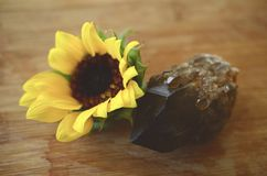 O vintage desvaneceu-se foto das flores, de crisântemos brilhantes das cores e de girassóis Arranjo floral das cores brilhantes b fotografia de stock royalty free