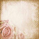 O vintage pontilha o fundo de papel com rosas ilustração stock