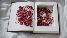 O vintage registra com as flores vermelhas secadas em uma cama branca Nostálgico do conceito e fundo do vintage da relembrança foto de stock