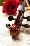 O violino e levantou-se Imagem de Stock