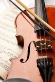 O violino e levantou-se imagem de stock royalty free