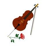 O violoncelo e aumentou Fotografia de Stock