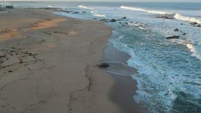 O voo aéreo para a frente sobre a praia e o oceano em Portugal no nascer do sol como pássaros voam abaixo filme