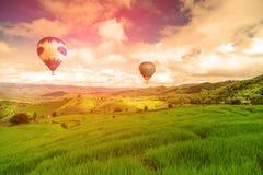 O voo do balão no campo do arroz, no campo do arroz na montanha ou no terraço do arroz na natureza, relaxa o dia no lugar bonito, Foto de Stock Royalty Free