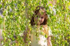 O vygladyvat da menina devido aos ramos de árvore do vidoeiro Fotos de Stock