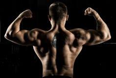 O weightlifter enorme está estando com o o seu de volta à câmera e ao st Fotografia de Stock Royalty Free
