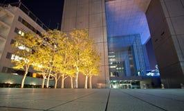 oświetleniowa architektury noc Obraz Stock
