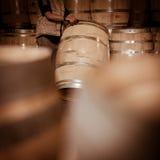 O Winemaker barrels mover-se para cima ou para baixo rolando na terra Fotografia de Stock