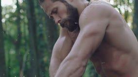 O woodcuter forte que vê a árvore com serra de cadeia lentamente filme