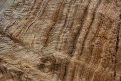 O woodgrain ondulado, cortou o log de madeira com grão incomum fotos de stock
