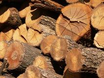 O woodpile Fotos de Stock